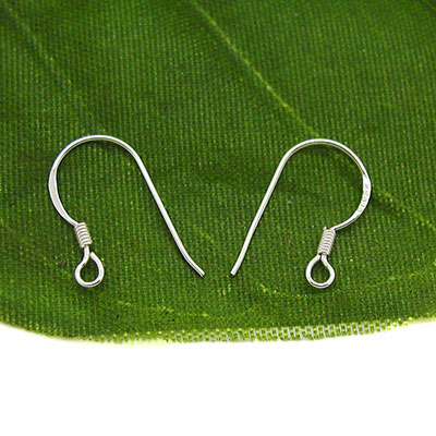 Sterling Silver Hook Earwires