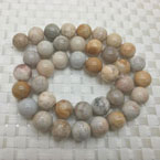 Coral Fossil Beads