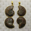 Fashion jewelry pendants, Nautilus shell fossil with metal frame, Approx 68x24x7mm, Sold by pieces